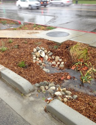 Rainfall makes a creek out of the newly completed Woodman Avenue green street medians.